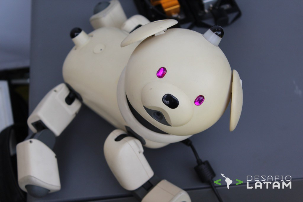 Robotics Day - Perro robot