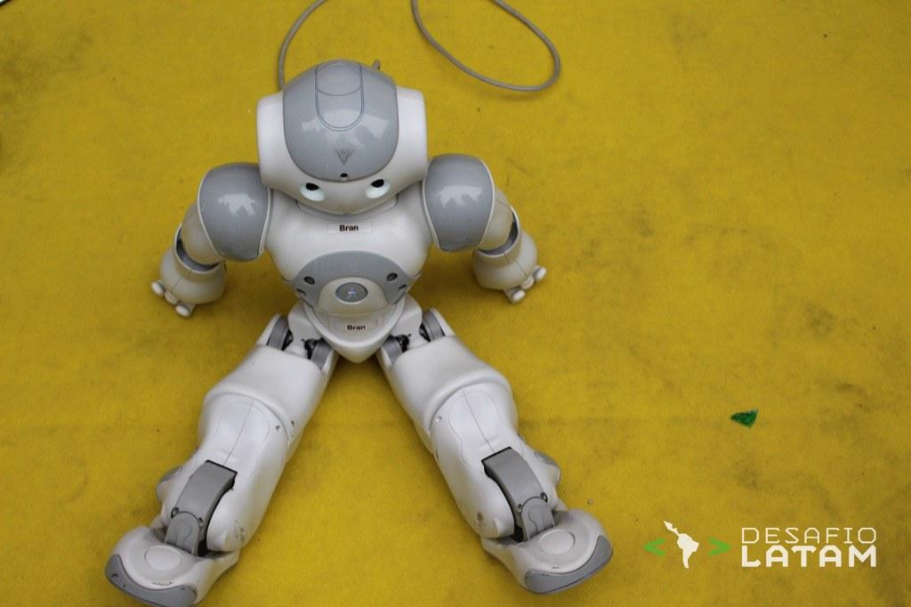 Robotics Day - Robot Bran